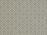 Covington Andrea 908 PLATINUM Fabric