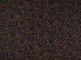 Covington Ansonia BRONZE Fabric