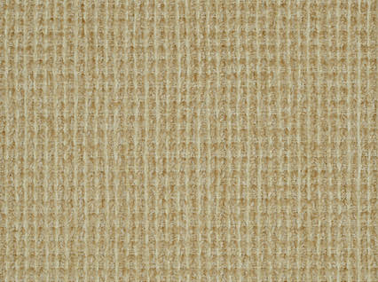 Covington Solids%20and%20Textures Athens