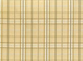 Covington Bailey 101 NATURAL Fabric