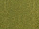 Covington Bengal GRASSLAND Fabric