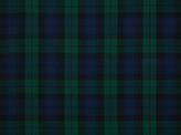 Covington Wovens Blackwatch Fabric