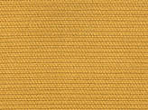 Covington Braydon 808 DARK GOLD Fabric