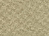 Covington Brooke 13 RAFFIA Fabric