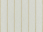Covington Carter CHAMPAGNE Fabric