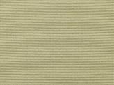 Covington Cavezzo CHAMPAGNE Fabric