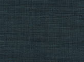 Covington Chinook BLUE Fabric