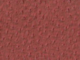 Covington Ensenada CHERRY Fabric