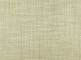 Covington Escolca CHAMPAGNE Fabric