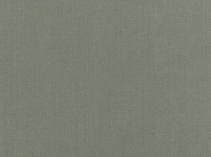 Covington Solids%20and%20Textures Glynn Linen