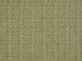 Covington Jackie-o Backed 201 GREEN TEA Fabric