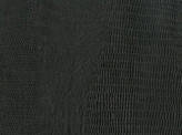 Covington Linares BLACK Fabric