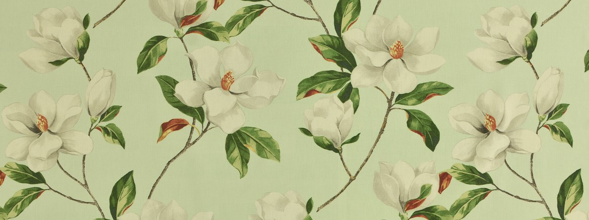 Magnolia 20 MINT