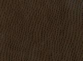 Covington Osorno BRIAR Fabric
