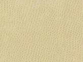Covington Osorno FAWN Fabric
