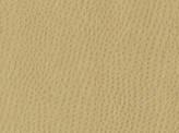 Covington Osorno FLAX Fabric