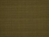 Covington Promenade CARNIVAL Fabric