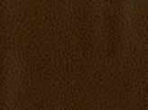 Covington Rosario COCOA Fabric