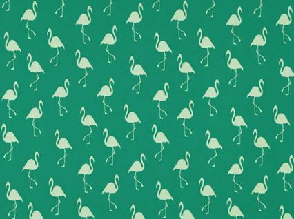 Sd flamingo 210 Jade