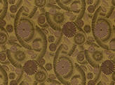 Fabric-Type Drapery Serendipity Fabric