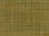 Covington Sierra SWAMP Fabric