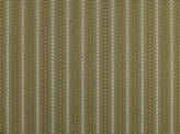 Covington Skylar 683 BRASS Fabric
