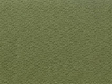 Spinnaker 228 FERN