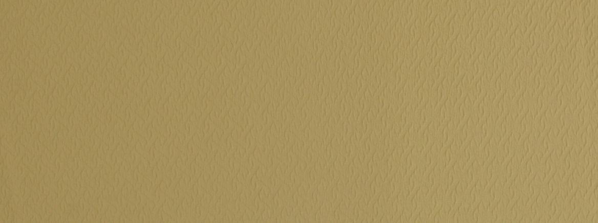 Tagami 881 VINTAGE GOLD