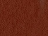 Covington Tulum CLOVE Fabric