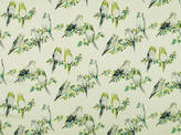 Collections June-2018 Tweety Fabric