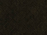 Color Black Valdivia Fabric